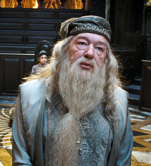 Eight lessons i ve learned from harry potter for Harry potter professor dumbledore wand