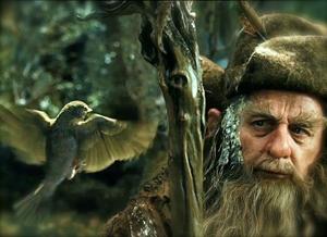 hobbita_radagast