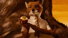 fox_original